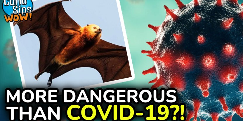 Nipah Virus - We Are In Danger Of A More Serious Pandemic Than The Coronavirus?!